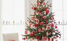 Новогоднее спец.предложение краснодар, мультисертификат