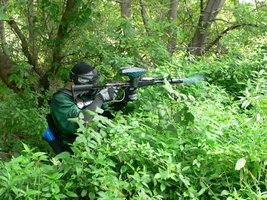 пейнтбол в лесу краснодар