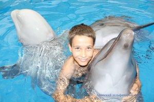 купание с дельфинами подарочный сертификат краснодар
